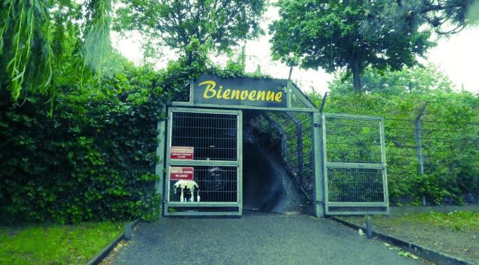 AS Pierrots Vauban Strasbourg – ASC Biesheim